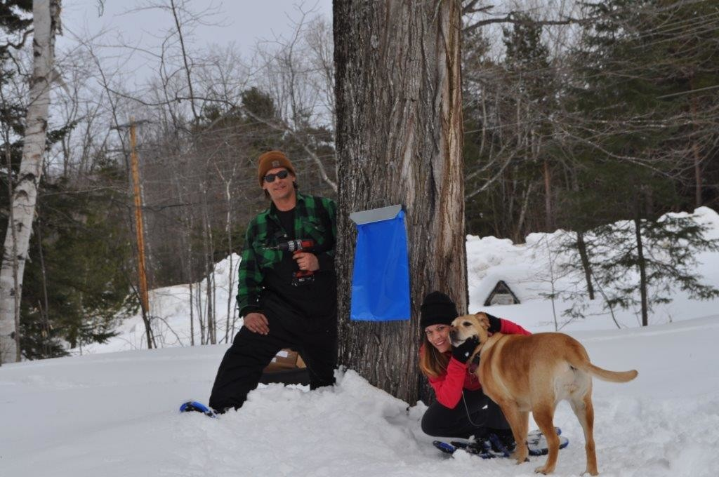 Maple Syrup 2015 163